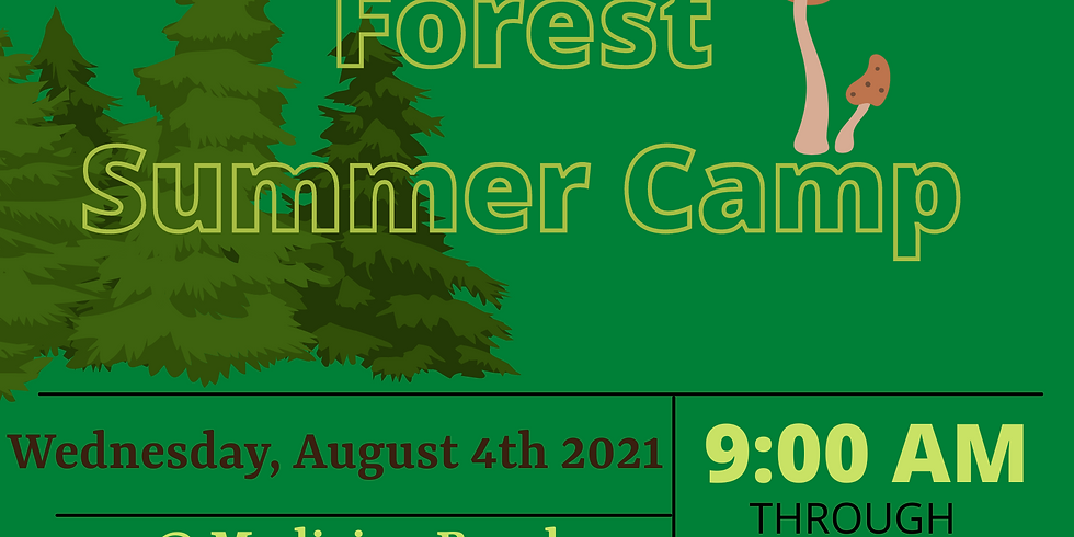 Secrets of the Forest Summer Day Camp