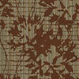Fall Chrysanthemum 67505