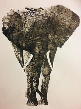 Puneet Elephant Community.jpg