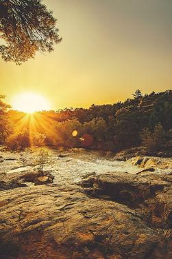 dawn-evening-golden-horizon-1420440.jpg