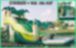 Party Rentals | Austin TX | Temple Tx   Lg Tropical  Water Slide