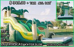 LG Tropical Party Rentals | Austin TX | Temple Tx   Lg Tropical  Water Slide