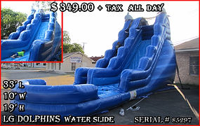 Party Rentals | Austin TX | Temple Tx Lg Dolphins Water Slide