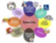 Infografía_Derechos_OCIO.png