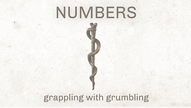 Numbers graphic.png