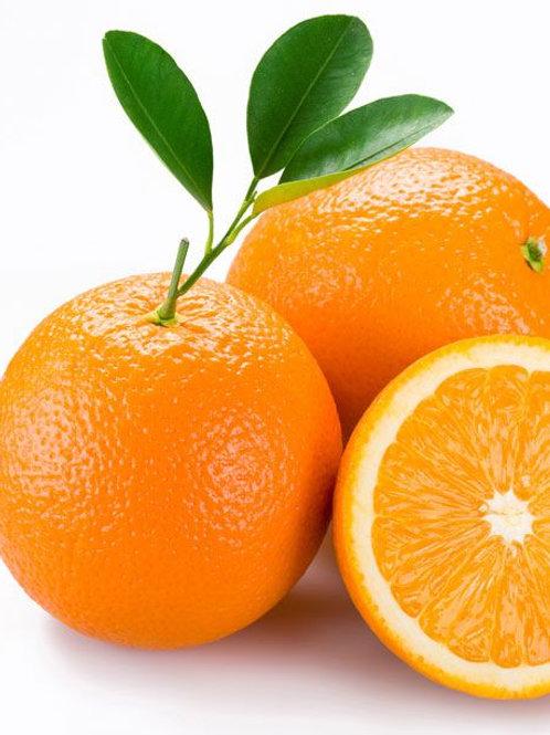 Sıkmalık Finike Portakalı 13,5 Kg