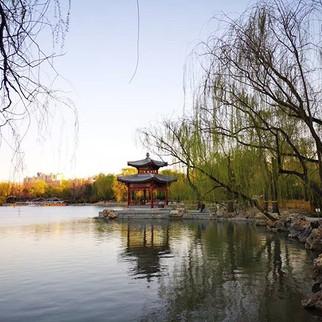 taman bambu,  taman Behai,  dan taman bo