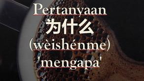 Tata Bahasa: Pertanyaan 为什么 (wèishénme) 'mengapa'