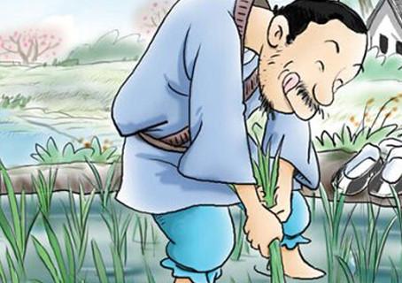 Idiom Mandarin: 拔苗助长 (bá miáo zhù zhǎng)