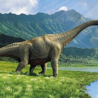 דינוזאורים 1.jpg