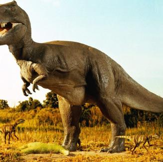 דינוזאורים 4.jpg