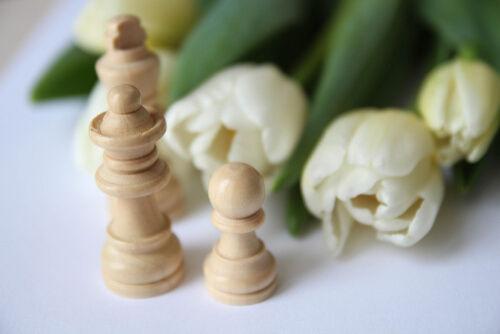 Chess concierge Professional資格