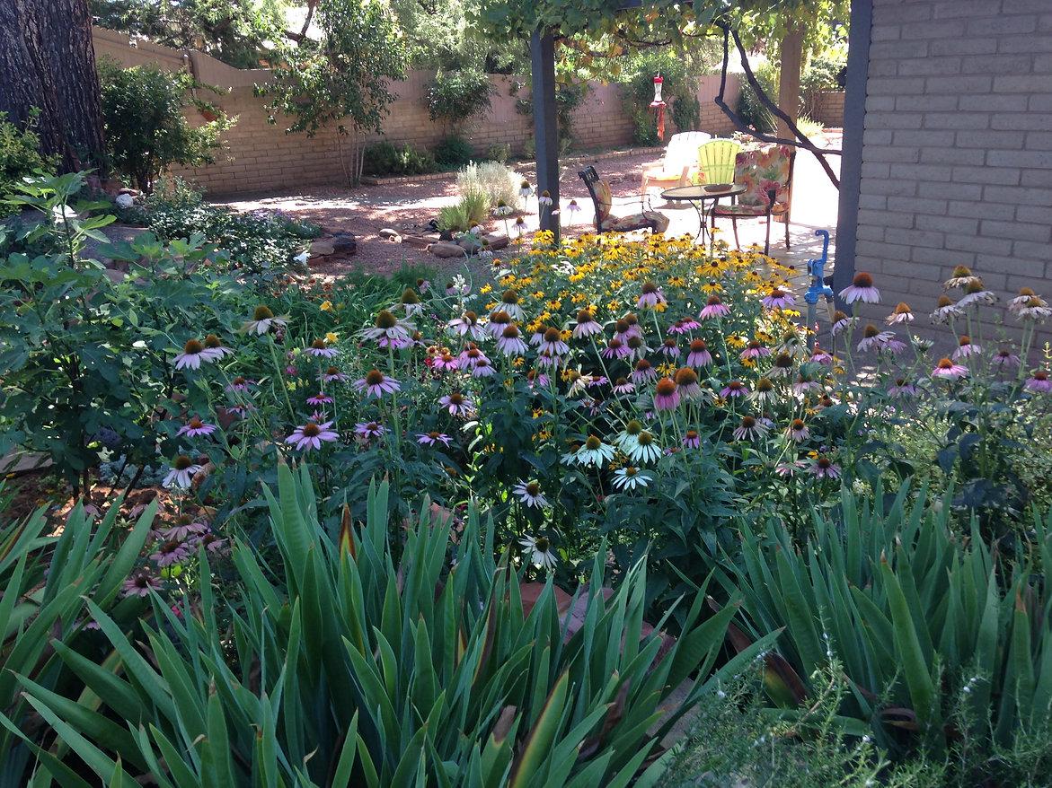 Garden in July.jpg