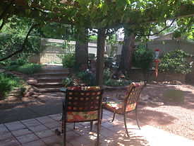 patio w grapes.jpg