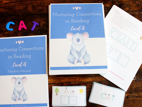 INTRODUCING Nurturing Connections in Reading: Level A