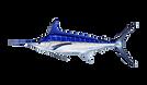 marlin-blue.png
