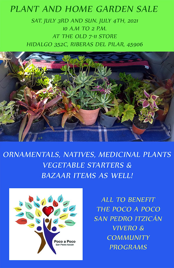Plant sale Flyer 3 and 4 July 2021.jpg