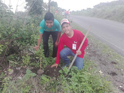 Reforestation project 2018