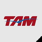 clientes_industria_tam.png