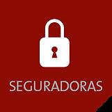 clientes_seguradora_abertura.png
