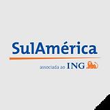 clientes_seguradora_sulamerica.png