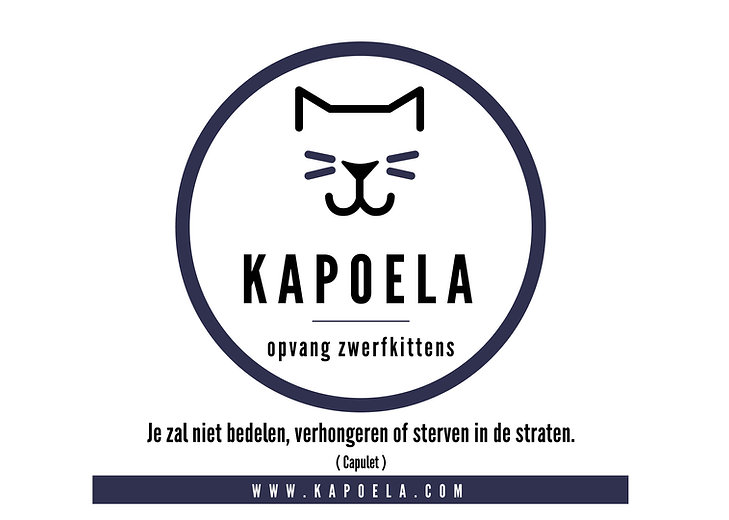Kapoela_1_witte-achtergrond.jpg
