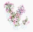 Fleurs roses tarif.png