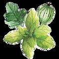 feuilles.png
