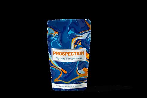 prospection.png
