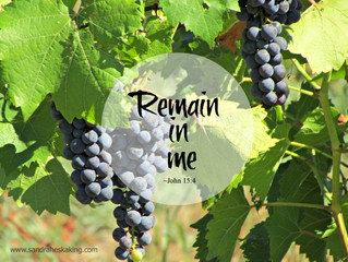 Remaining in the Vine