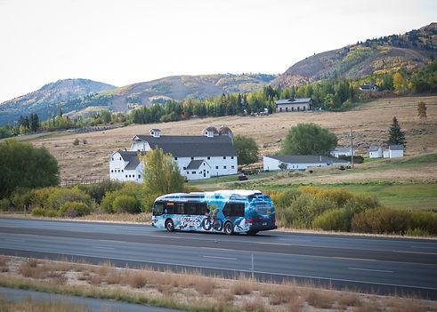 Electric Buses.jpg