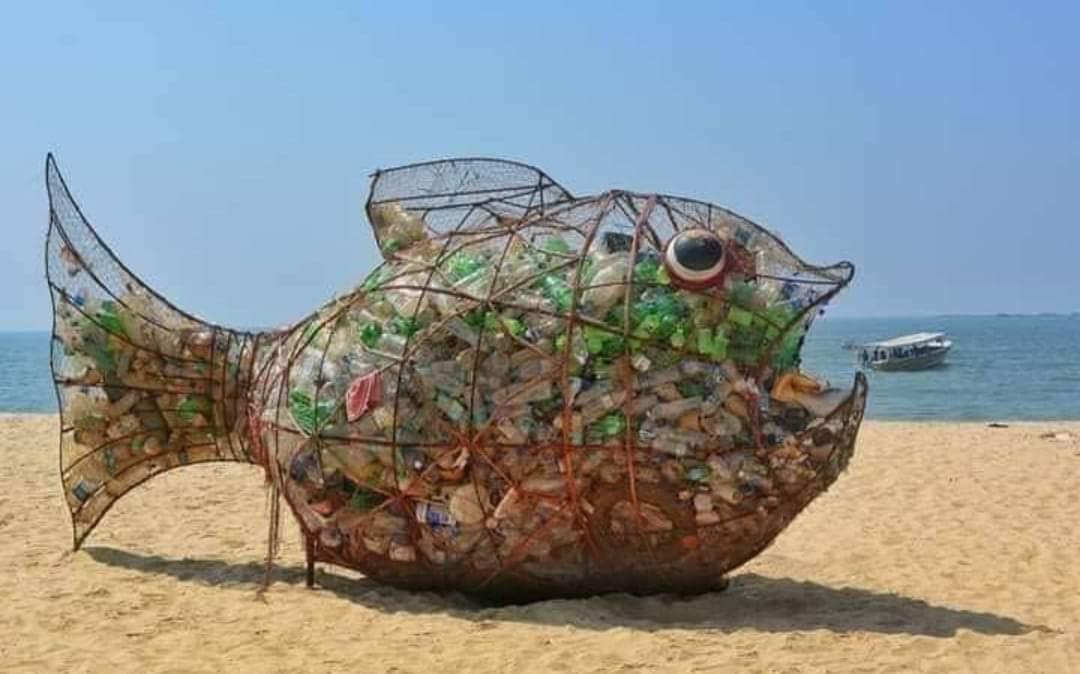 Pick up trash