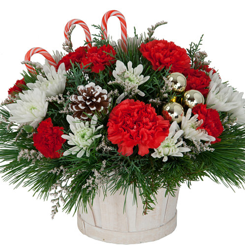 Carnation Mum Christmas Centerpiece