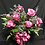 Thumbnail: Dozen Rose Vase