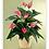 Thumbnail: Blooming tropical plants
