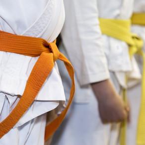 Virtual Karate