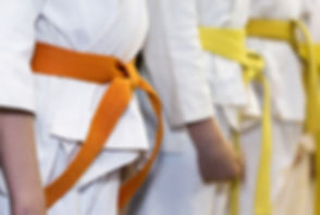 Martial Arts Class