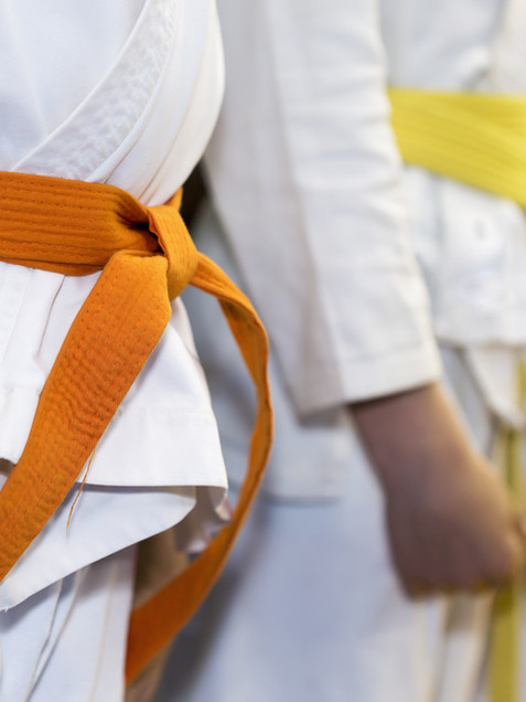Arts martiaux Sud Bretagne