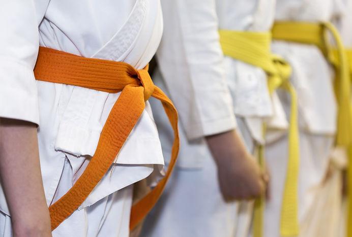 Arts martiaux de classe