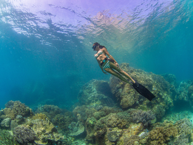 A freediver