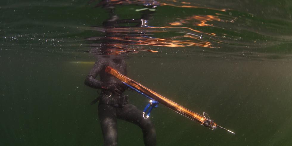 Spearfishing Expedition - Rockfish Exploration - Ucluelet, BC