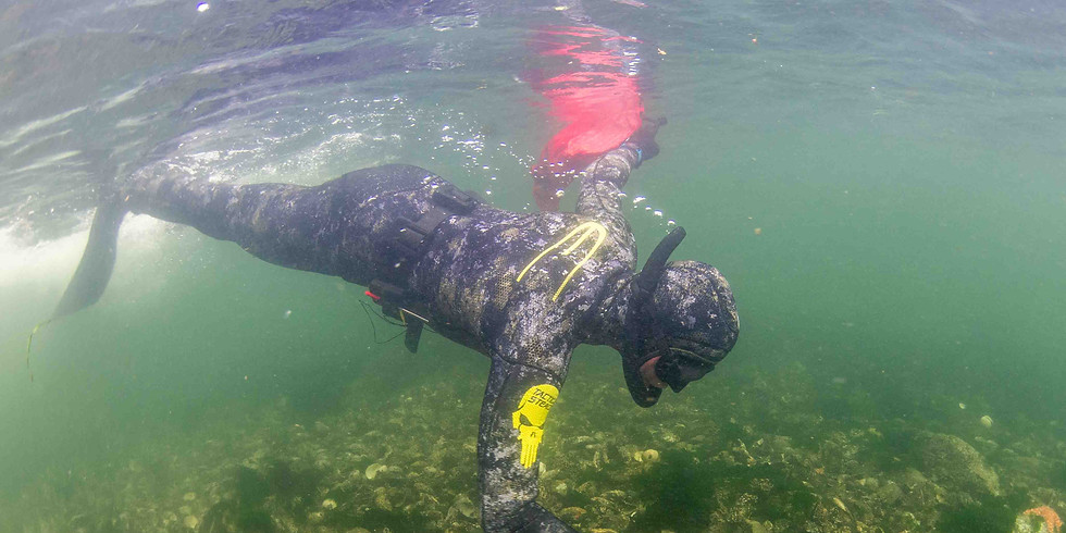 Spearfishing Expedition - Harvesting Edition - Ucluelet, BC