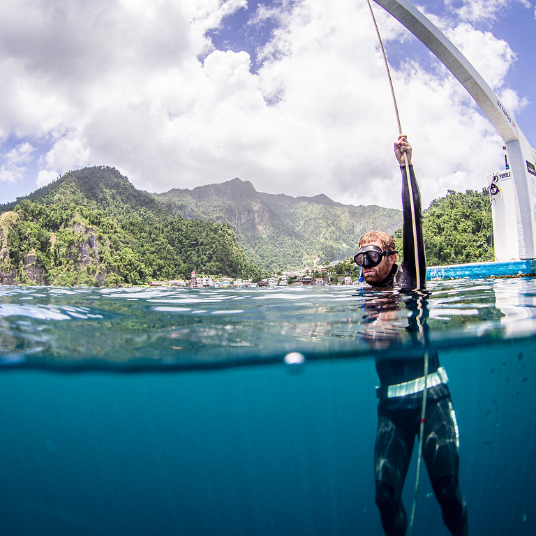 Dominica Training Camp - 1 Week Freediving the Nature Island - Soufriere, Dominica