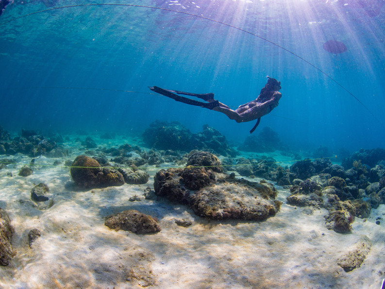 A freediver in her element