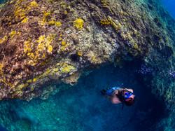 Freediving Apo Island