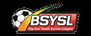 BSYSL Logo.png