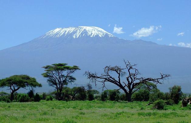 kilimanjaro-1025146_1920_edited.jpg