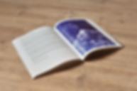 pagy-wicks-berlin-publication-design-sem