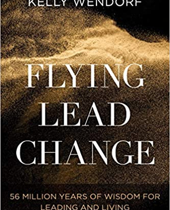Flying Lead Change by Kelly Wendorf