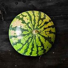 Melone_small.jpg